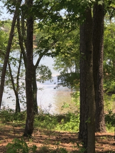 View of Lake Blalock